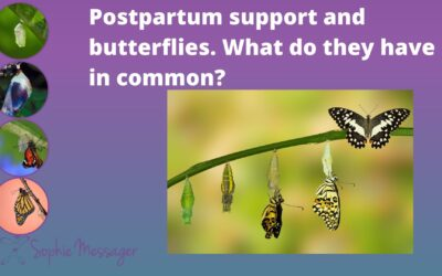 Postpartum support and butterflies: what do they have in common?