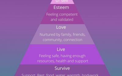 Maslow's Hierarchy of needs for the postpartum