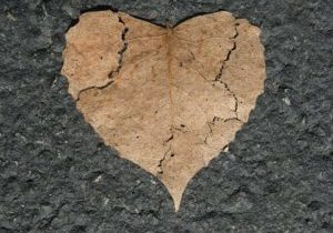 cracked leaf heart