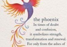 phoenix compressed